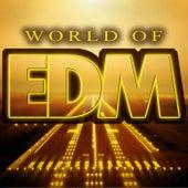 World of EDM de Various Artists