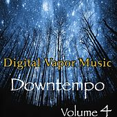 Digital Vapor Music Downtempo, Vol. 4 de Various Artists