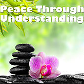 Peace Through Understanding by Various Artists