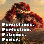 Persistance. Perfection. Patience. Power. by Various Artists