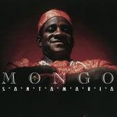 Afro American Latin de Mongo Santamaria