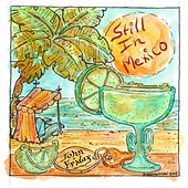 Still in Mexico by John Friday