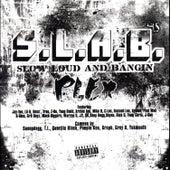 Plex, Vol. 4 by S.L.A.B.