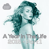 A Year in the Life of Heavenly Bodies: 2015 Part 1 de Various Artists