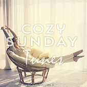 Cozy Sunday Tunes, Vol. 3 (Finest Lay Back & Relax Music) by Various Artists