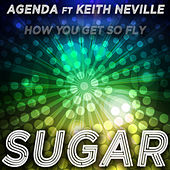 Sugar (How You Get so Fly) by The Agenda