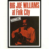 At Folk City 1962 de Big Joe Williams