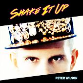 Shake It Up by Peter Wilson