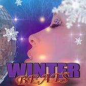 Winter Beats de Various Artists