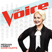 Love Hurts by Meghan Linsey
