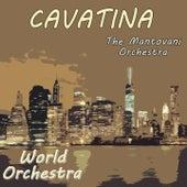World Orchestra,Cavatina von Mantovani & His Orchestra