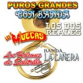 Puros Grandes Con Banda by Various Artists