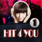 Hit 4 You 1 de Various Artists
