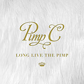 Friends (feat. Juicy J and Nas) by Pimp C
