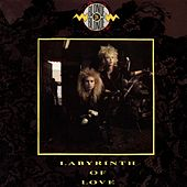 Labyrinth of Love by Blonde On Blonde