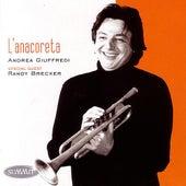 L'anacoreta by Andrea Giuffredi