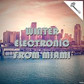 Winter Electronic from Miami by Various Artists