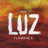 Una Luz Flamenca de Various Artists
