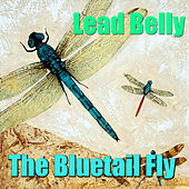 The Bluetail Fly by Lead Belly