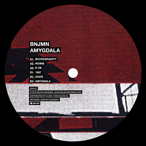 Amygdala by Bnjmn