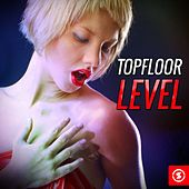 Topfloor Level by Various Artists