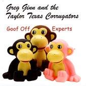 Goof Off Experts by Greg Ginn