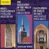 The Fascination of the Organ by Bernhard Römer