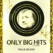 Only Big Hits by Willie Nelson