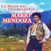 Lo Mejor del Incomparable...Mario Mendoza by Mario Mendoza