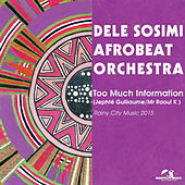 Too Much Information (Remixes) by Dele Sosimi Afrobeat Orchestra