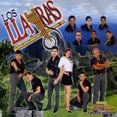 Mi Gran Amor by Los Llayras