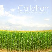 The Calm Before The Storm de Callahan