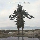 Rook de Shearwater