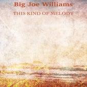 This Kind of Melody (Remastered) de Big Joe Williams