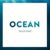 Ocean van David Dahl