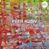 Chasing Unicorns / Storch von Peer Kusiv