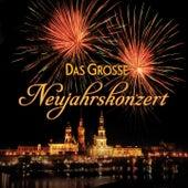 Das große Neujahrskonzert de Various Artists