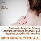 Entspannung für die Halswirbelsäule - Wohltuende Übungen zur Dehnung, Lockerung und Stärkung der Sch von Torsten Abrolat