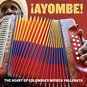 ¡Ayombe! The Heart of Colombia's Música Vallenata von Various Artists
