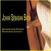 Johann Sebastian Bach: Brandenburg Concerts (Brandenburgische Konzerte) by Mainz Chamber Orchestra