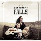 We Shared a Promise - Single de Sentiment Falls