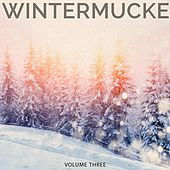 Wintermucke, Vol. 3 (Finest Selection of Chilled Electronic Beats) by Various Artists