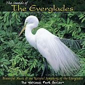 The Sounds of the Everglades by Various Artists