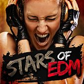 Stars of EDM de Various Artists