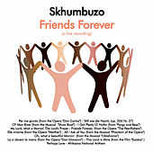 Friends Forever de Various Artists