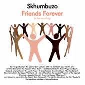 Friends Forever von Various Artists