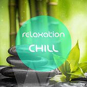 Relaxation Chill  (Anti Stress Relaxing & Meditation Music ) de Various Artists