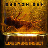 Like Every Insect by System Syn