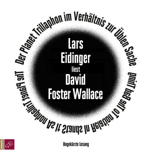 Der Planet Trillaphon im Verhältnis zur Üblen Sache (ungekürzt) von David Foster Wallace