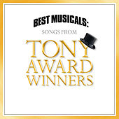 Best Musicals: Songs From Tony Award Winners by Various Artists